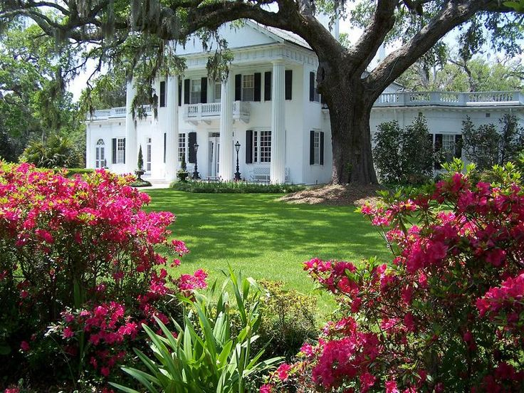 southern. Love this home and living in the south... perfect combination