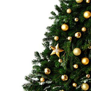 Programme beauté : 30 jours avant Noël