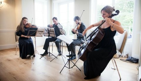 One of our string quartets playing in the Belvedere Suite for a wedding reception.