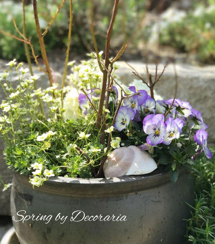 Frühling bei Decoraria #flowers #spring #frühling #photography #instagood #instagram #decoraria #decoration #lifestyle #wohnen #garten #living #lifestyle