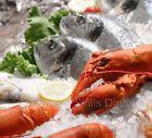 alaska crab fishing Sorting Their Catch