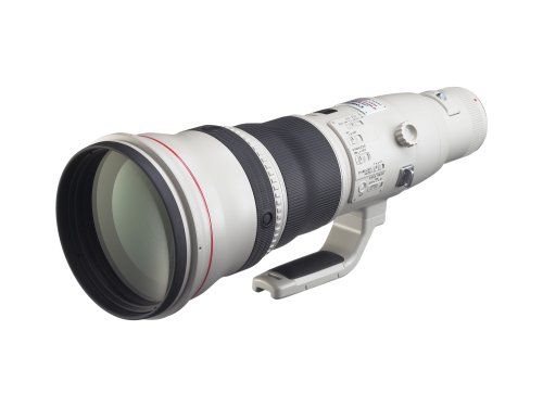 Canon EF 800mm f/5.6L IS USM Super Telephoto Lens for Canon Digital SLR Cameras - http://allgoodies.net/canon-ef-800mm-f5-6l-is-usm-super-telephoto-lens-for-canon-digital-slr-cameras/