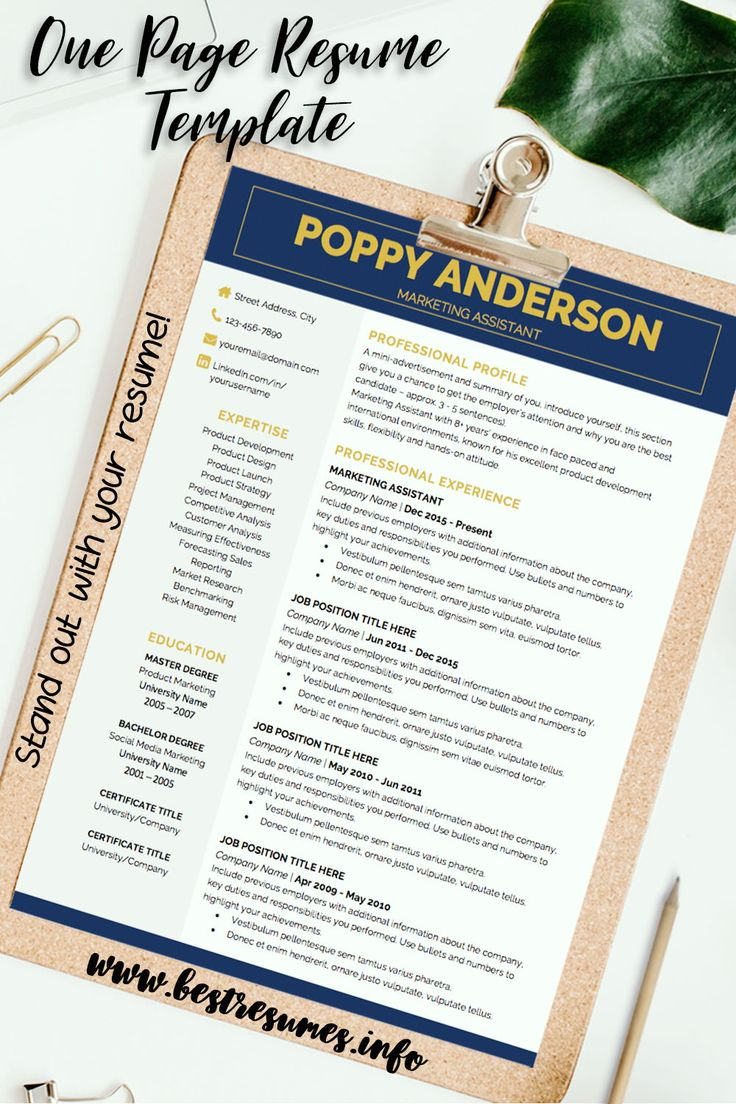 Business Resume Template Poppy Anderson (With images