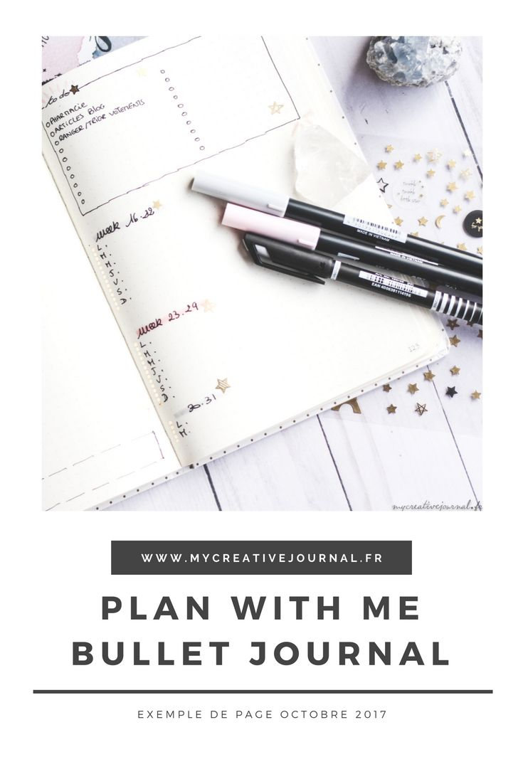 plan with me bullet journal exemple page mensuelle minimaliste
