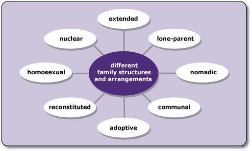 Family: The Meaning, Features, Types and Functions (5230 Words)