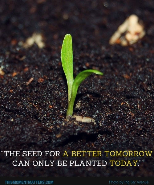 """""""The seed for a better TOMORROW can only be planted TODAY."""" Whatever you sow - in thoughts, words or actions - will grow... so what are you planting today?"""