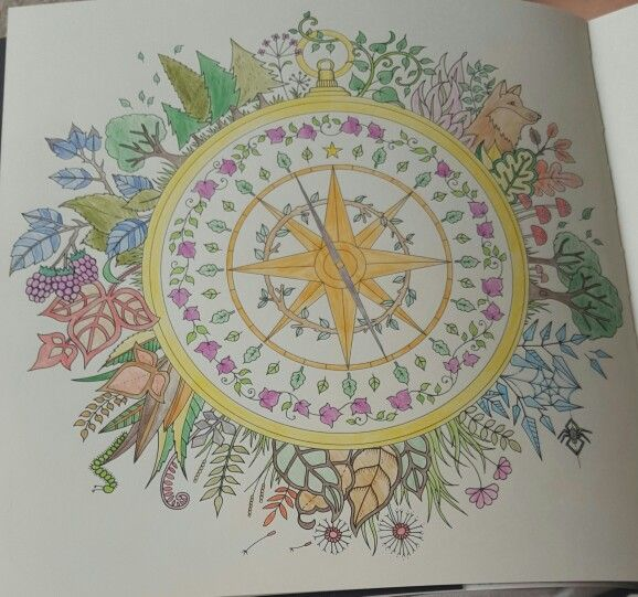 Forest compass
