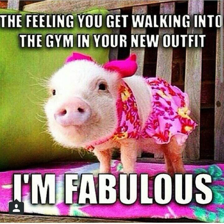 Funny workout quotes. 21 Day Fix, Extreme, Insanity Max 30