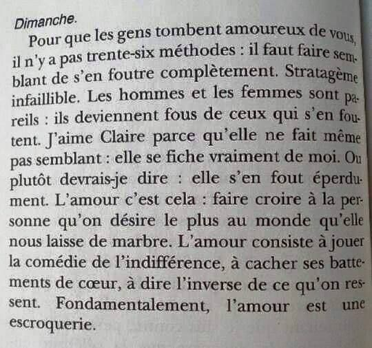 """Frédéric Beigbeder - """"L'égoïste romantique"""""""