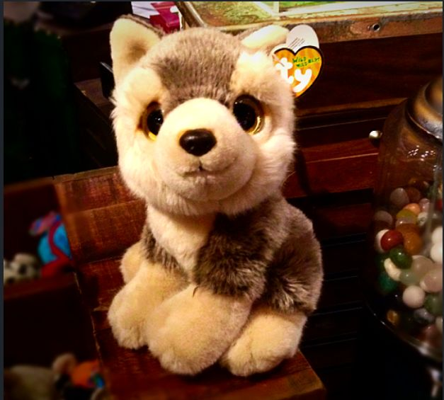 Our retail shop has so many cute Christmas toys for sale! We've got Huskies, Teddies, Reindeer, Penguins and much more! http://www.therainforestcafe.co.uk/aretail.asp
