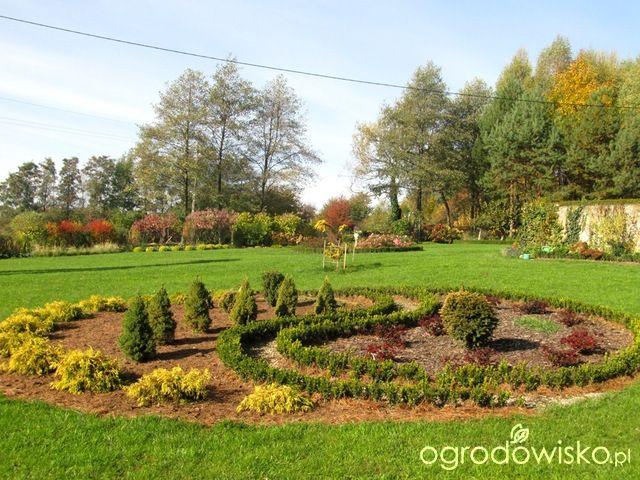 O....! - strona 493 - Forum ogrodnicze - Ogrodowisko
