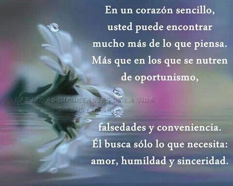 Solo busca amor, sinceridad y humildad