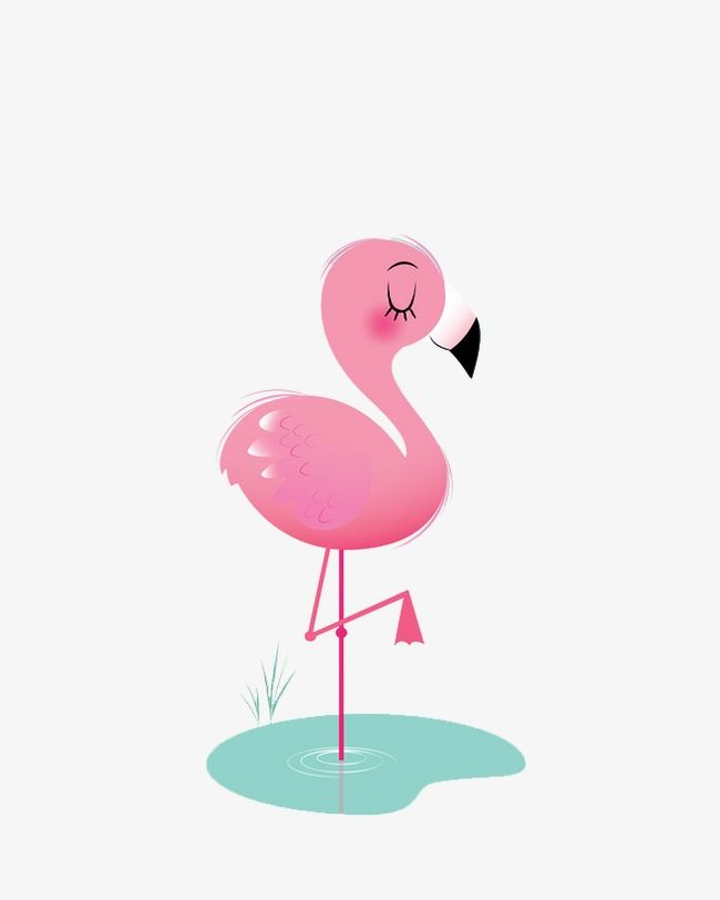 Flamingos, Hand Painted, Animal, Natural PNG Transparent