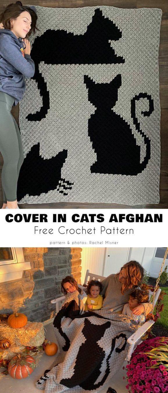 Manta especial para amantes de los gatos Patrones de ganchillo gratis