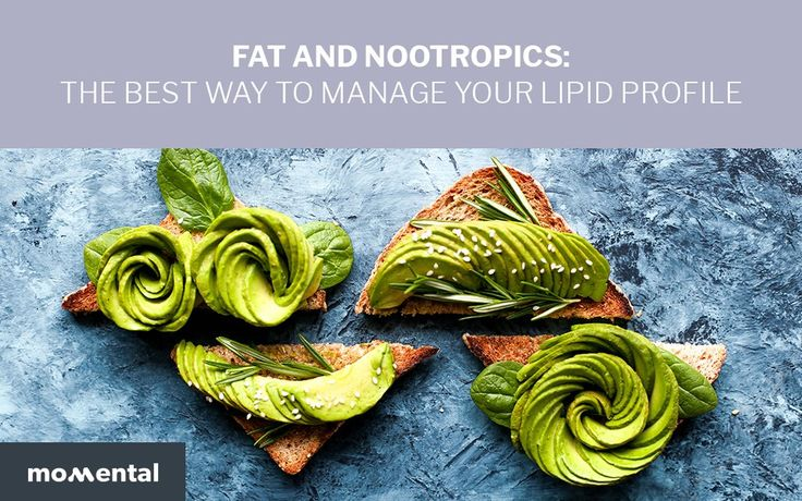 Fat and Nootropics: The Best Way to Manage Your Lipid Profile | Momental