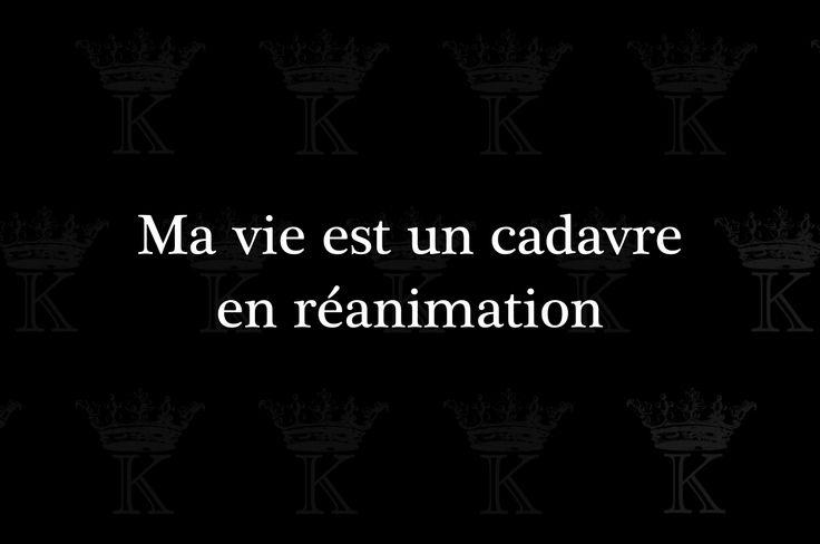 kradify: Ma vie est un cadavre en réanimation