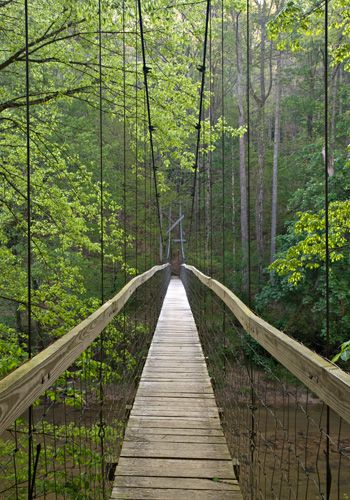 Transition- Red River Gorge Suspension bridge