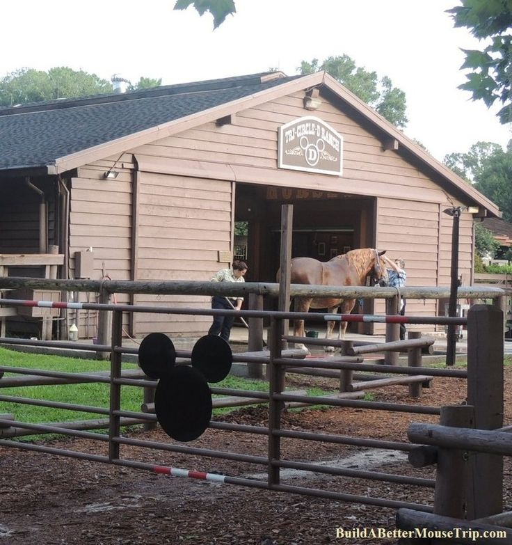 Disney World Totally Free Activity - See The Tri-Circle-D Ranch at Disney's Fort Wilderness Resort and Campground