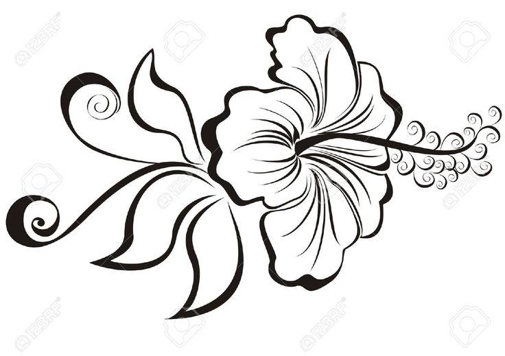 17 Best Images About Flores Blancas On Pinterest