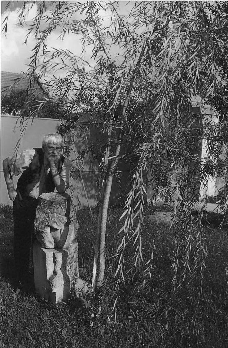 """MEMORIA  Petre Stoica din volumul """"Întrebare retorică"""" (1983), Editura Dacia  Memoria copacului memoria focului memoria granitului memoria fierului memoria mlastinei memoria baligei memoria prafului  memoria omului?"""