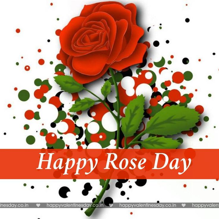 Rose Day   Free Valentine Ecards   Http://www.happyvalentinesday.co