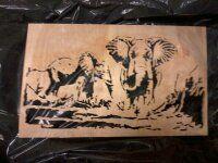 elefanter 9. januar 2014
