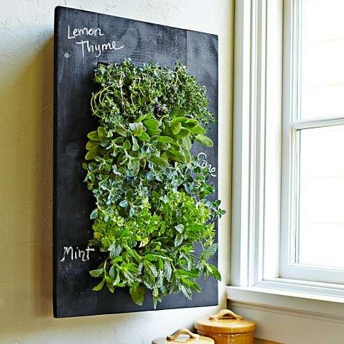 Grow your plants and herbs on the rustic looking Chalkboard Wall Planter from Williams-Sonoma. The black, chalkboard backing of this decorative planter lets you use chalk to mark and label what each plant is so that there is no confusion when it comes to choosing a few herbs to add to your culinary cooking.