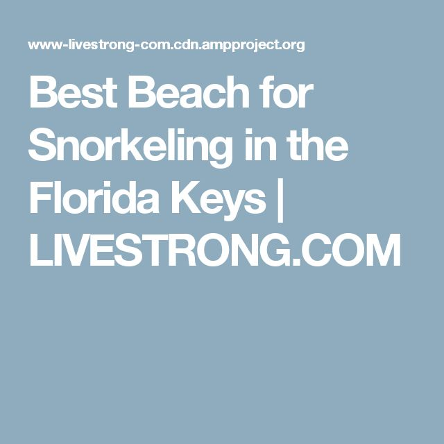 Best Beach for Snorkeling in the Florida Keys | LIVESTRONG.COM