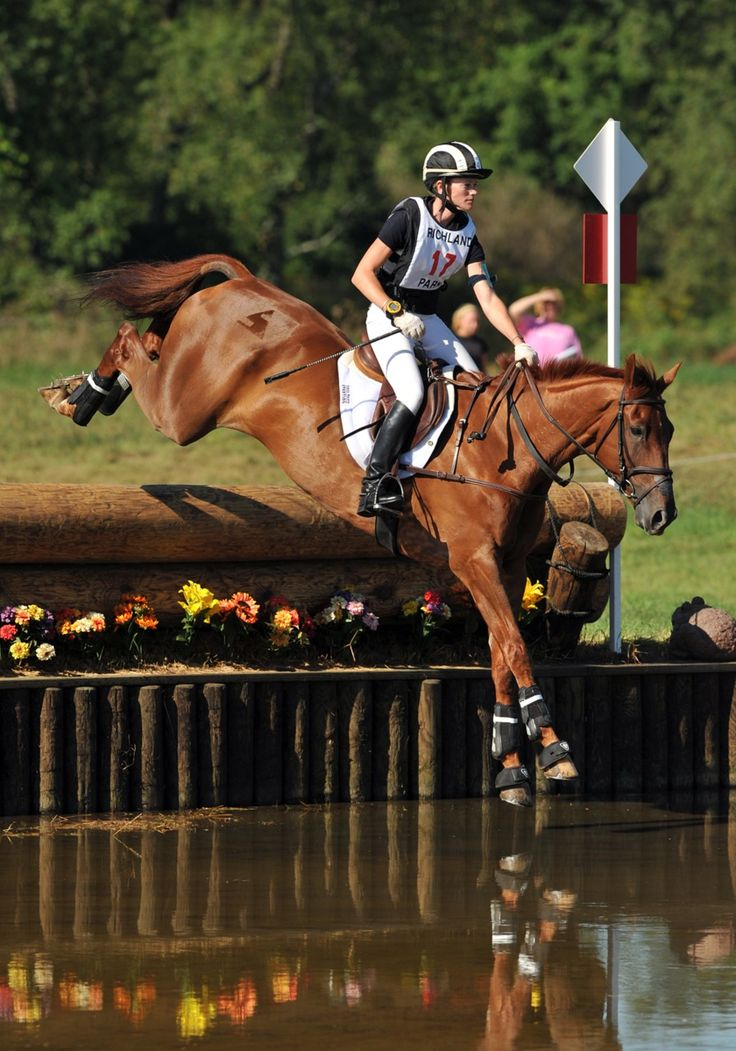 17 Best Images About Horses Cross Country On Pinterest