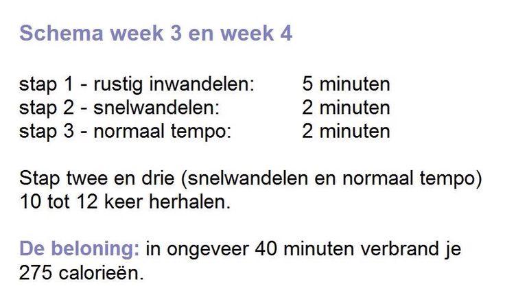 SPORTIEF WANDELEN WEEK 3 EN WEEK 4 Wandelen is een makkelijke manier om aan meer beweging te komen. Het is goed voor de doorbloeding en de spijsvertering. En omdat vooral been- en bilspieren worden gestimuleerd is het ook een goede remedie tegen cellulitis! www.sonjabakker.nl