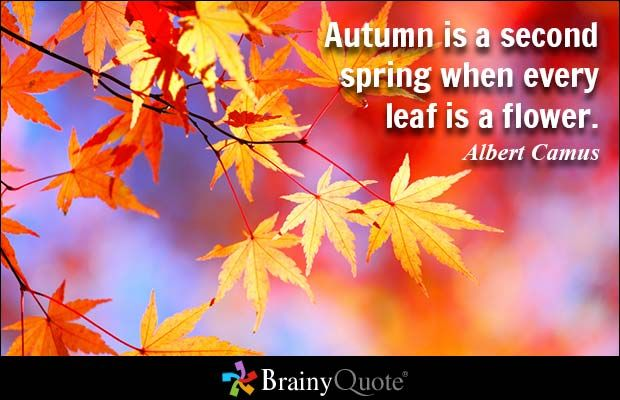 Albert Camus Quotes Autumn is a second spring when every leaf is a flower. - Albert Camus - BrainyQuote