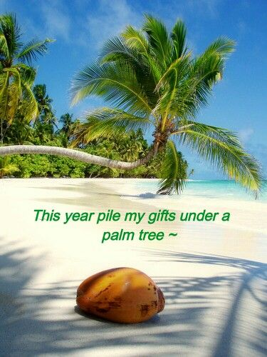 island life christmas in the caribbean would like to have a island christmas - Caribbean Life