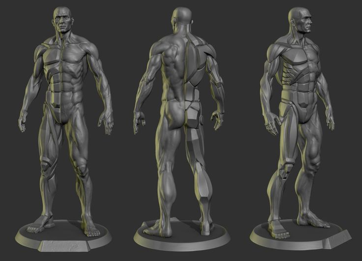 Davidness is now done with is planar anatomy body statue created with ‪#‎ZBrush‬. He also started a Kickstarter campaign, allowing you to buy this statue at 1/8 scale (9 inches). http://zbru.sh/lr