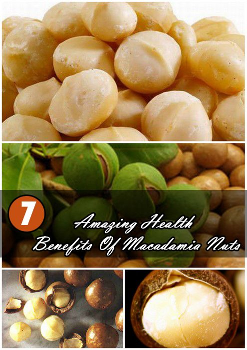 Health Benefits Of Macadamia Nuts...bring on the cookies!
