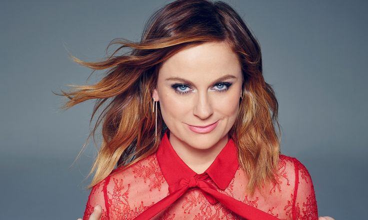 Amy Poehler is funny, inspirational and about to appear alongside Tina Fey in Sisters. She tells Elizabeth Day that the key to comedy – and life – is to take a tip from very small children and free yourself from embarrassment
