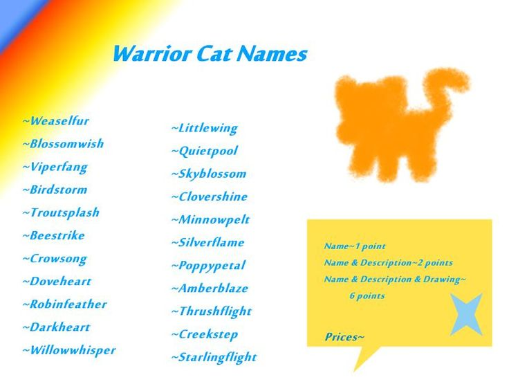 cool warrior cats warrior cat names for she cats