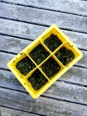 Freezing Parsley: How to Freeze Parsley