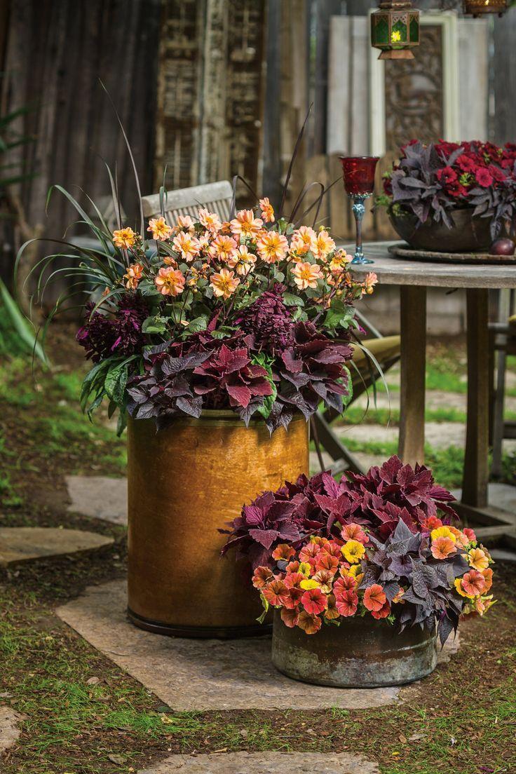 128 best Gardening Inspiration images on Pinterest | Gardening ...