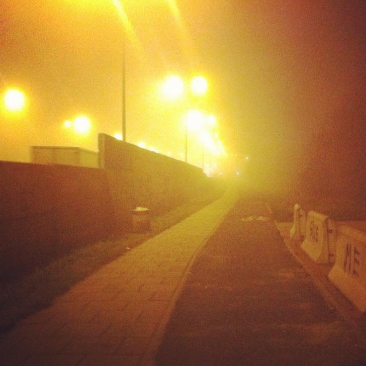 Wola West Fog