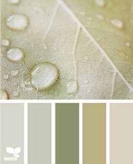 leaf dew: Colour, Colors Combos, Color Palettes, Living Rooms, Design Seeds, Color Schemes, Bedrooms Colors, Bathroom Colors Schemes, Colors Palettes