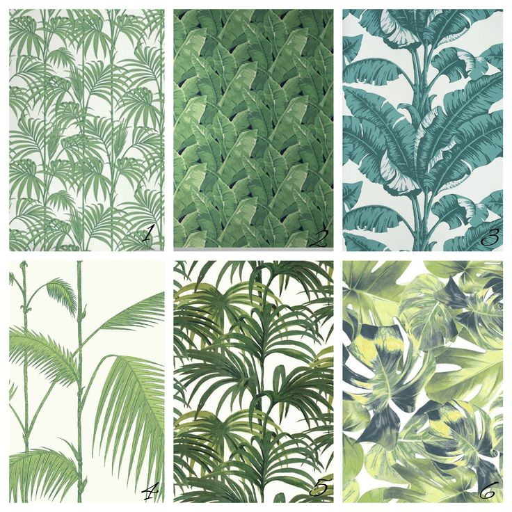"""PAPIER PEINT FEUILLAGE VERT, N°7, collection """"Welcome to the jungle"""", Rebel walls"""