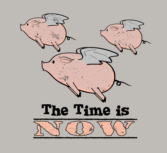When Pigs Fly Shirt Pig Shirt The Time is Now by FunhouseTshirts, $14.99