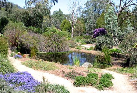 Australian Native Garden Inspiration - The Jacob Garden, Victoria.