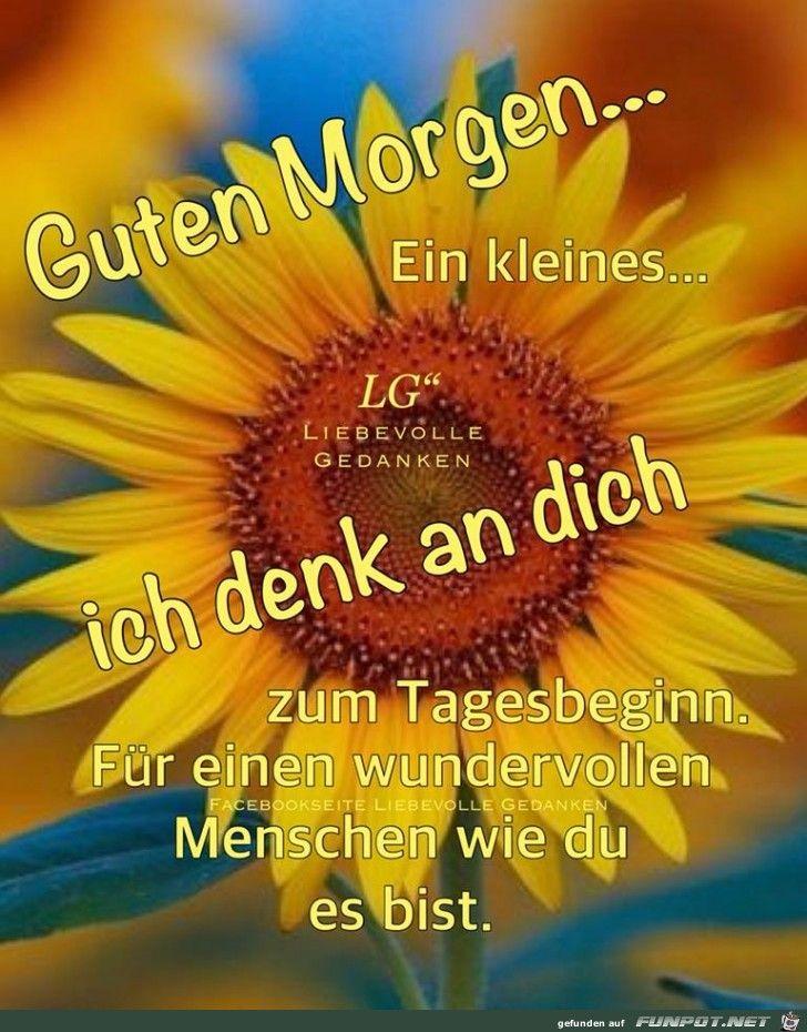Pin Von Ingrid Auf Guten Morgen Liebe Guten Morgen Grüße