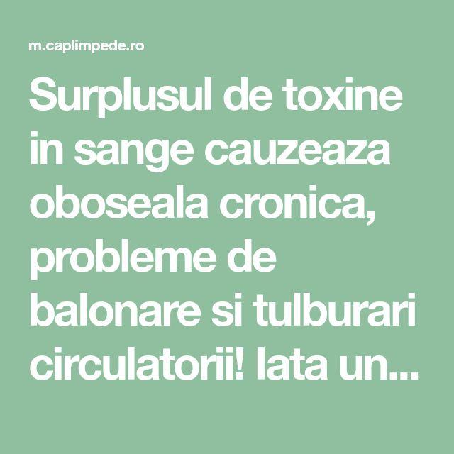 Surplusul de toxine in sange cauzeaza oboseala cronica, probleme de balonare si tulburari circulatorii! Iata un remediu care te poate ajuta! – Cap Limpede