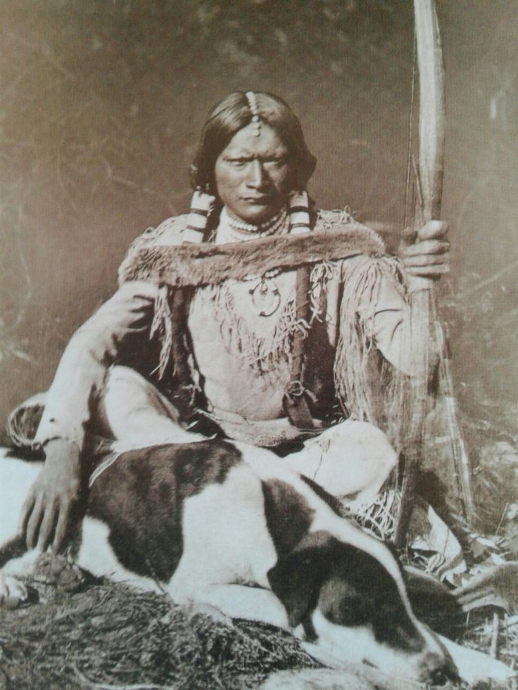 """Ute. Warrior, """" The Messenger  in full dress 1873 check out the beaded hair braids"""