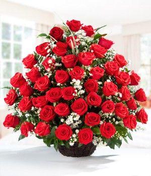 Şık bir sepetin içerisinde, yeşil yapraklarıyla 50 adet kırmızı gül. Kırmızı gül; büyük aşkı simgeler. Kırmızı gülün aşka dair her zaman söyleyecek bir şeyleri vardır. Sizin cümleleriniz yetmediğinde, kalbinizden geçenleri en güzel onlar tamamlayacak.