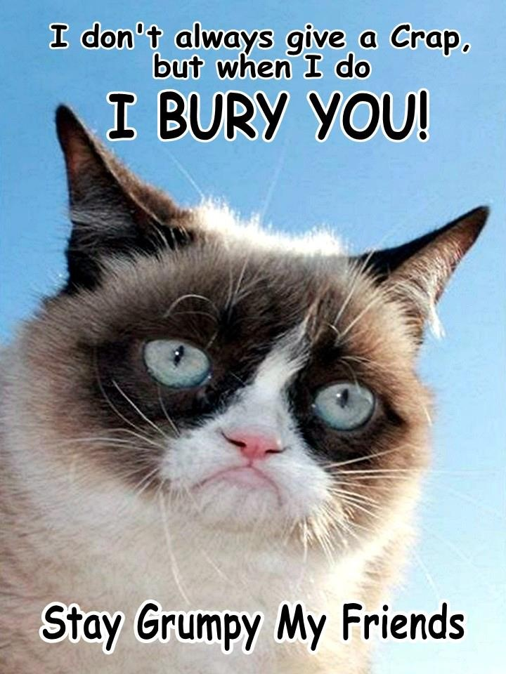 Cat Its Mine Not Yours Meme