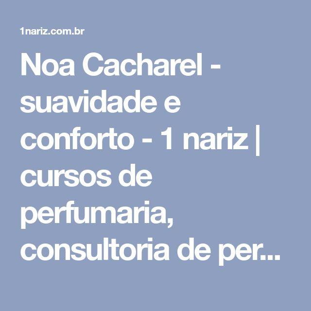Noa Cacharel - suavidade e conforto - 1 nariz | cursos de perfumaria, consultoria de perfume, resenha de perfumes importados