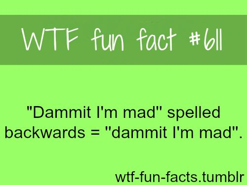 wtf fun facts | Tumblr